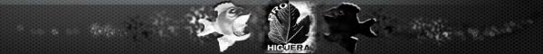 Blog de noticias de Higuera de la Serena